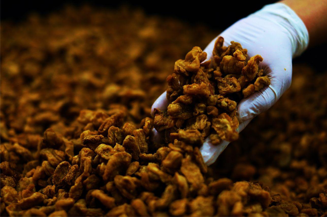 Proizvodnja mesa i mesnih prerađevina